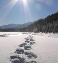 snowshoeing_tracks
